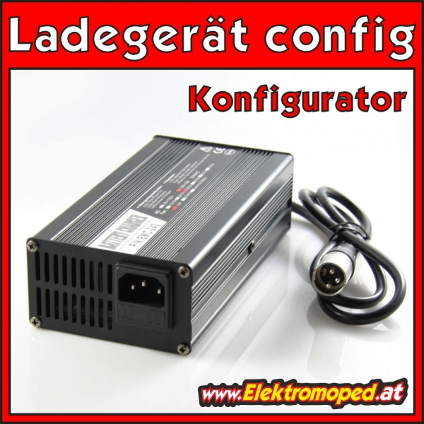 lifepo4 ladegerät | eBay